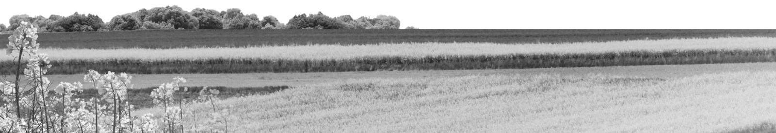 Oferta Małopolskiego Doradztwa Rolniczego