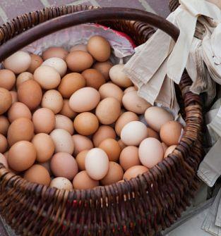 Jajka kurze