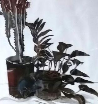 Rysunek węglem -Kwiaty