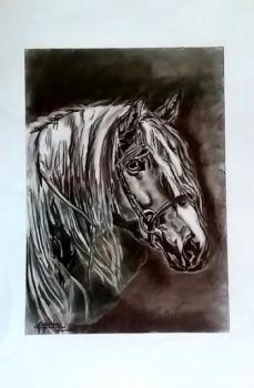 Konie - rysunki  węglem -rozmiar 40 x 60