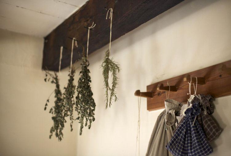 Suszone zioła - liść pokrzywy